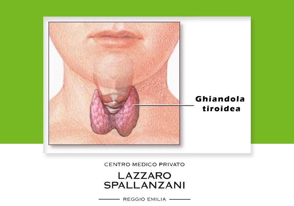 Perché eseguire un' ecografia tiroidea