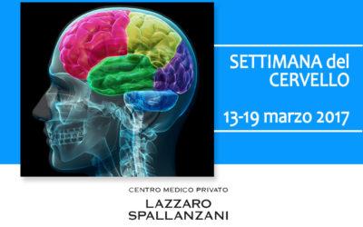 Cervello: la stimolazione dei circuiti cerebrali attraverso neuromodulazione